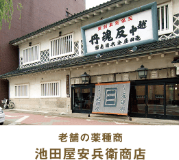 老舗の薬種商 池田屋安兵衛商店